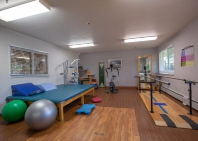 Therapy Gym 4
